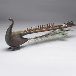 Stringed instrument in the shape of peacock