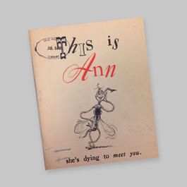 Printed pamphlet with illustration of a mosquito